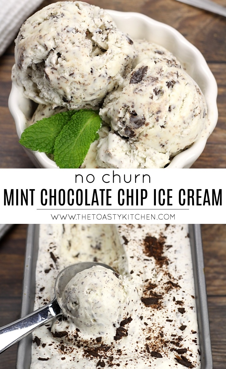 No Churn Mint Chocolate Chip Ice Cream by The Toasty Kitchen