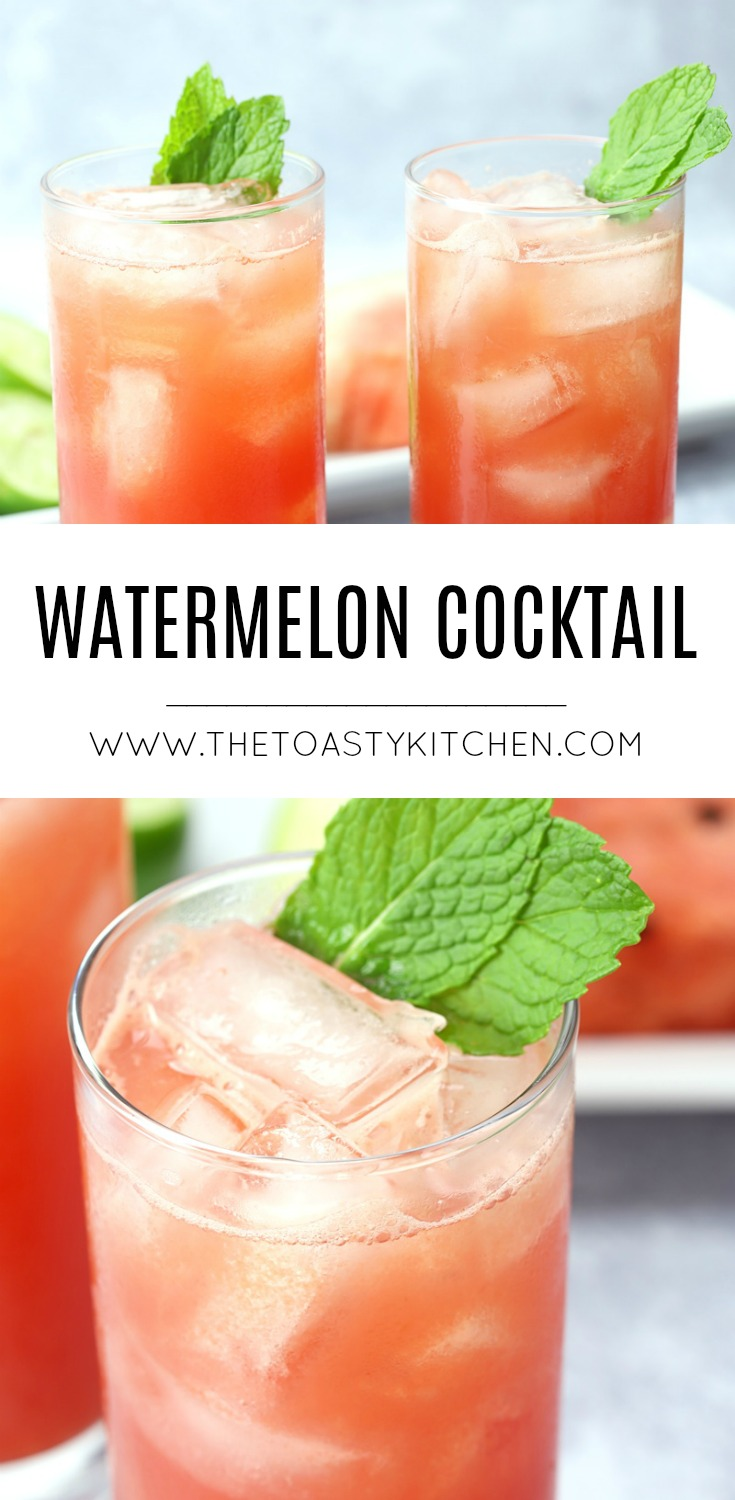 Watermelon Cocktail by The Toasty Kitchen