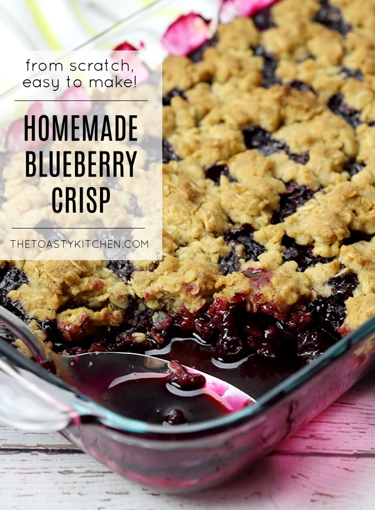 Blueberry Crisp by The Toasty Kitchen