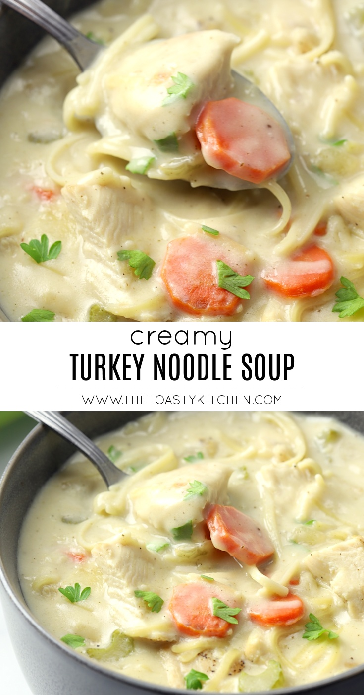 Creamy Turkey Noodle Soup by The Toasty Kitchen