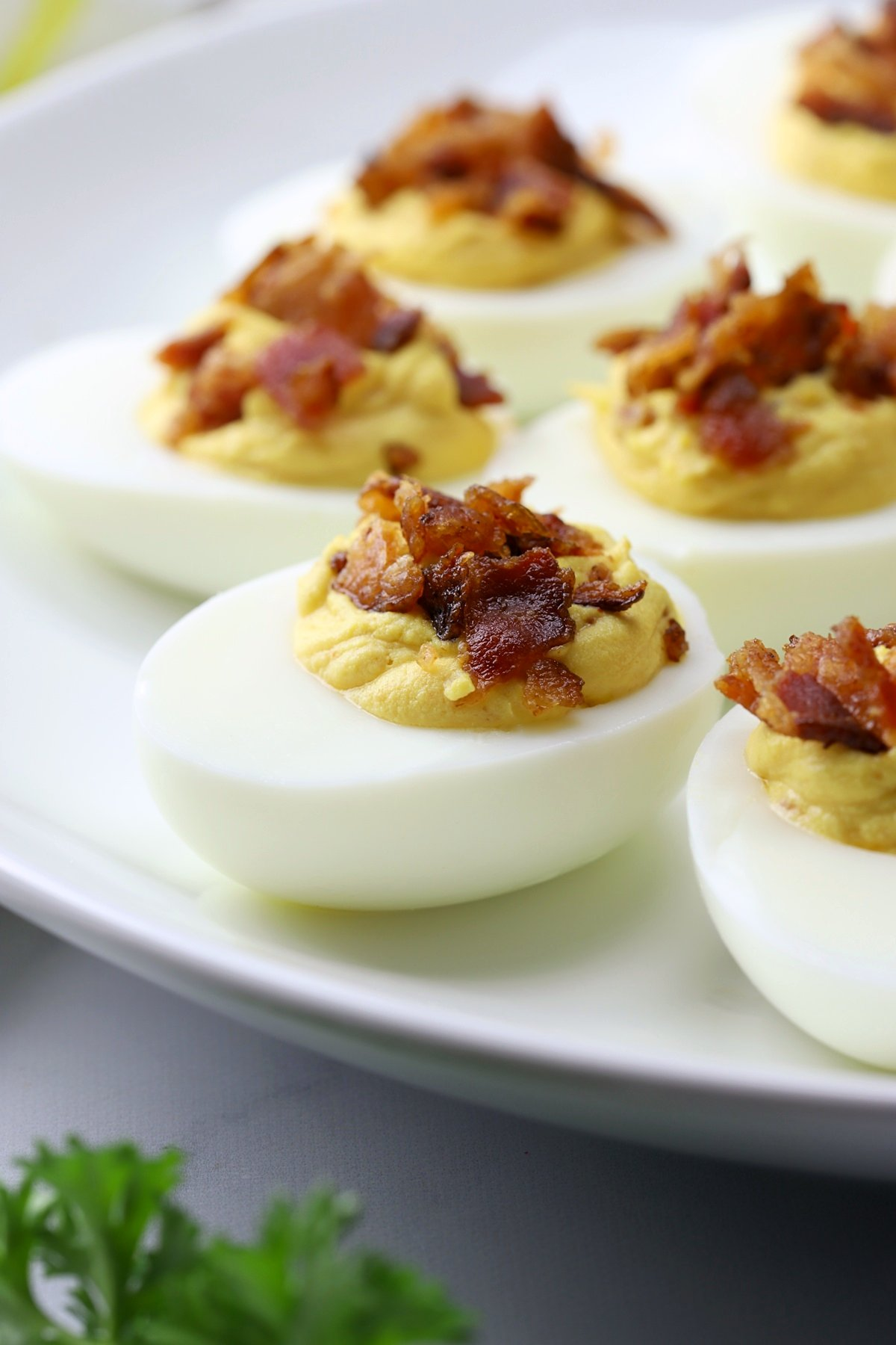 Deviled egg topped with crumbled bacon on a white plate.