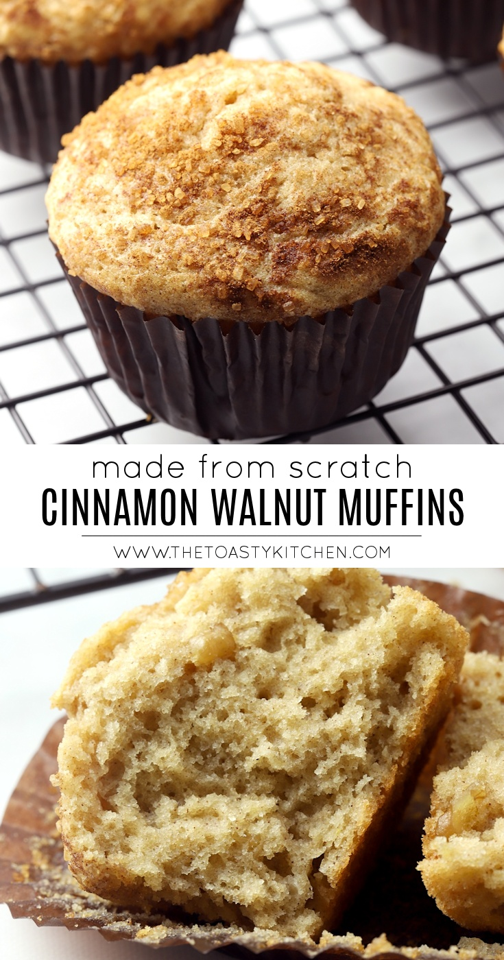 Cinnamon Walnut Muffins by The Toasty Kitchen