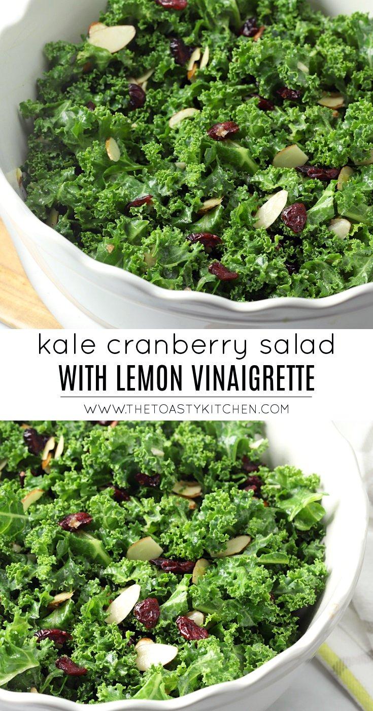 Kale Cranberry Salad with Lemon Vinaigrette by The Toasty Kitchen
