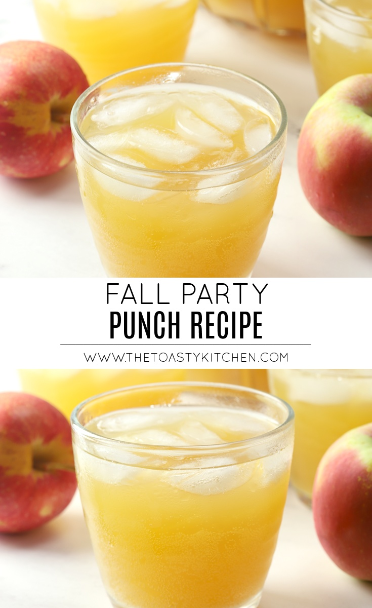 Fall Party Punch by The Toasty Kitchen
