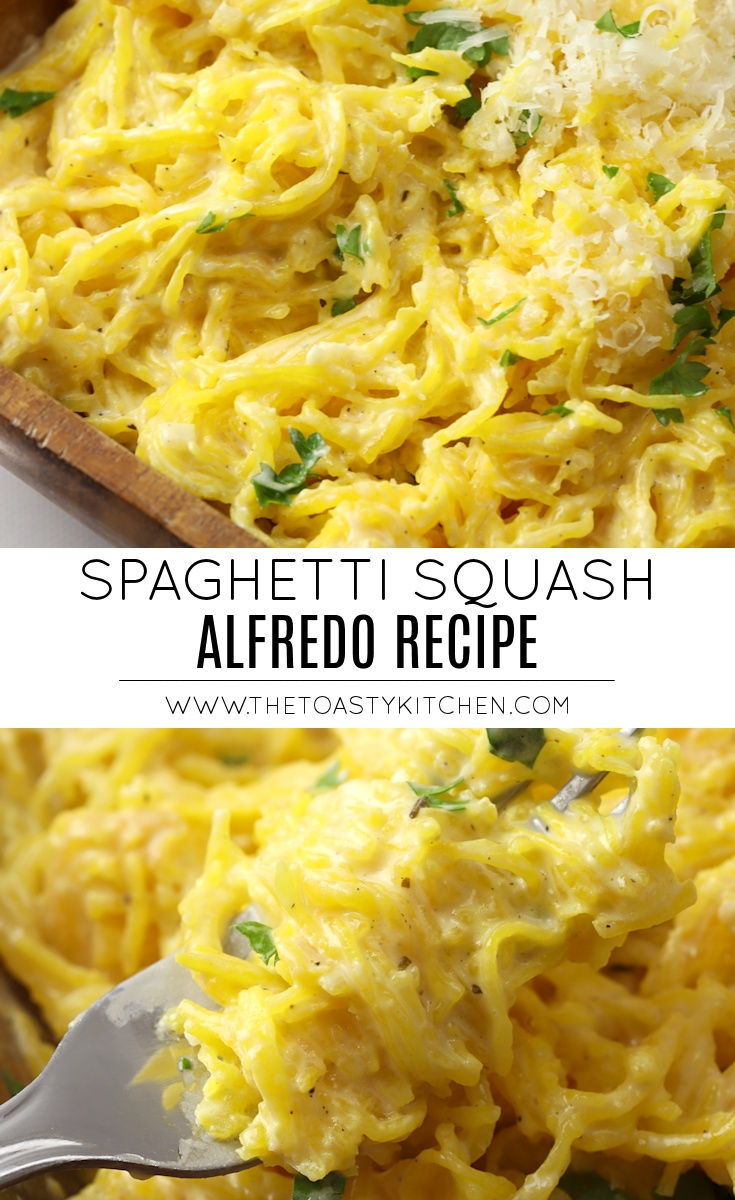 Spaghetti Squash Alfredo by The Toasty Kitchen