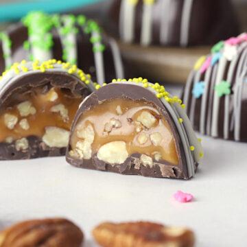 Chocolate turtle Easter egg cut in half.